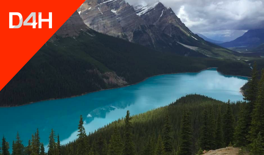 Canadian Government Deploys D4H as Provincial SAR Team Management Solution for Alberta